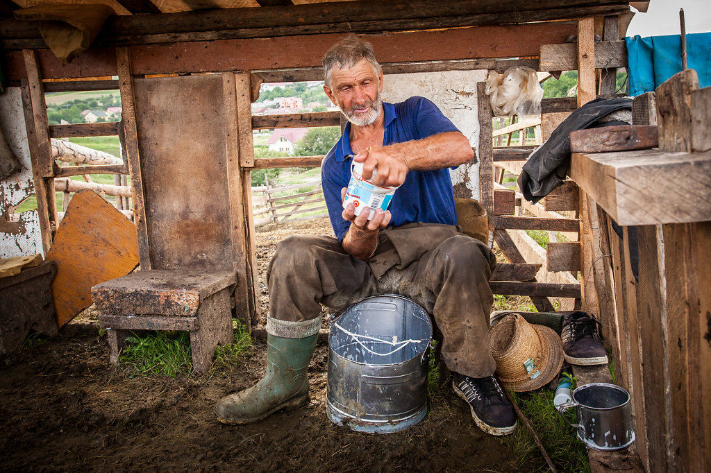 Daily milk, Dej, Romania